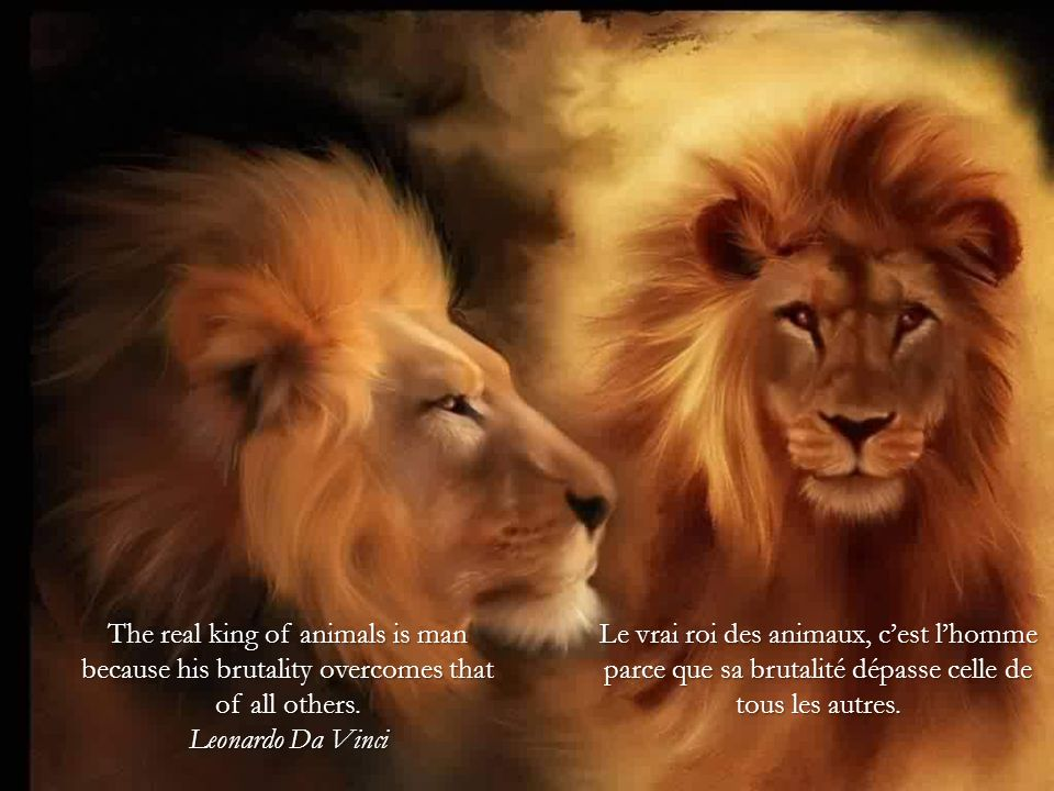 The real king of animals is man because his brutality overcomes that of all others. Leonardo Da Vinci
