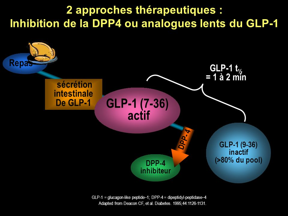 2 approches thérapeutiques : Inhibition de la DPP4 ou analogues lents du GLP-1
