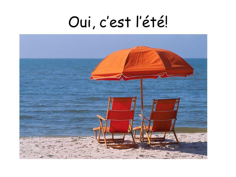 Oui, c'est l'été! Yes, it is summer!