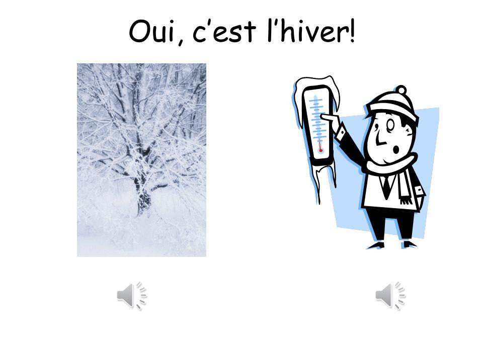 Oui, c'est l'hiver!
