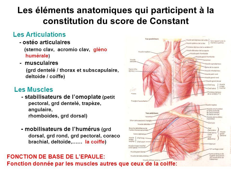 Les éléments anatomiques qui participent à la constitution du score de Constant