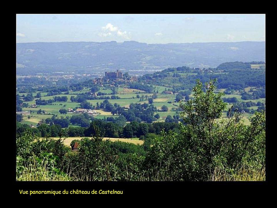 Vue panoramique du château de Castelnau