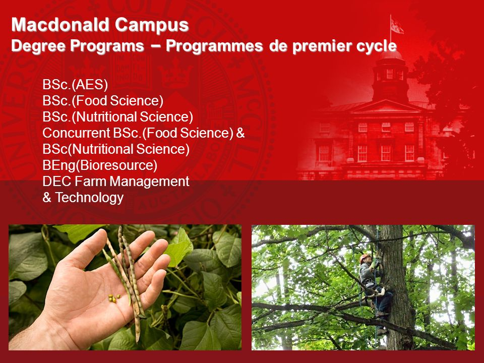 Macdonald Campus Degree Programs – Programmes de premier cycle