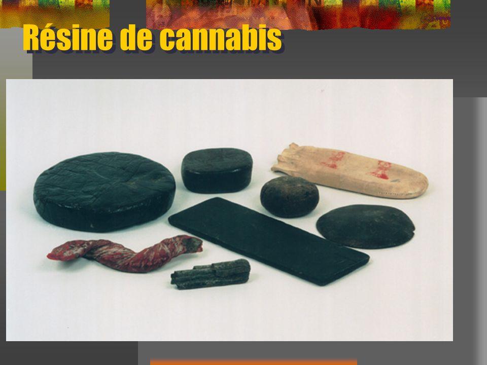 Résine de cannabis