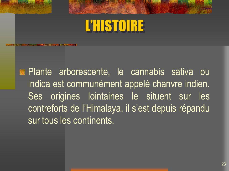 L'HISTOIRE