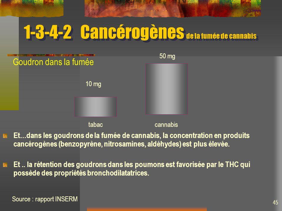1-3-4-2 Cancérogènes de la fumée de cannabis