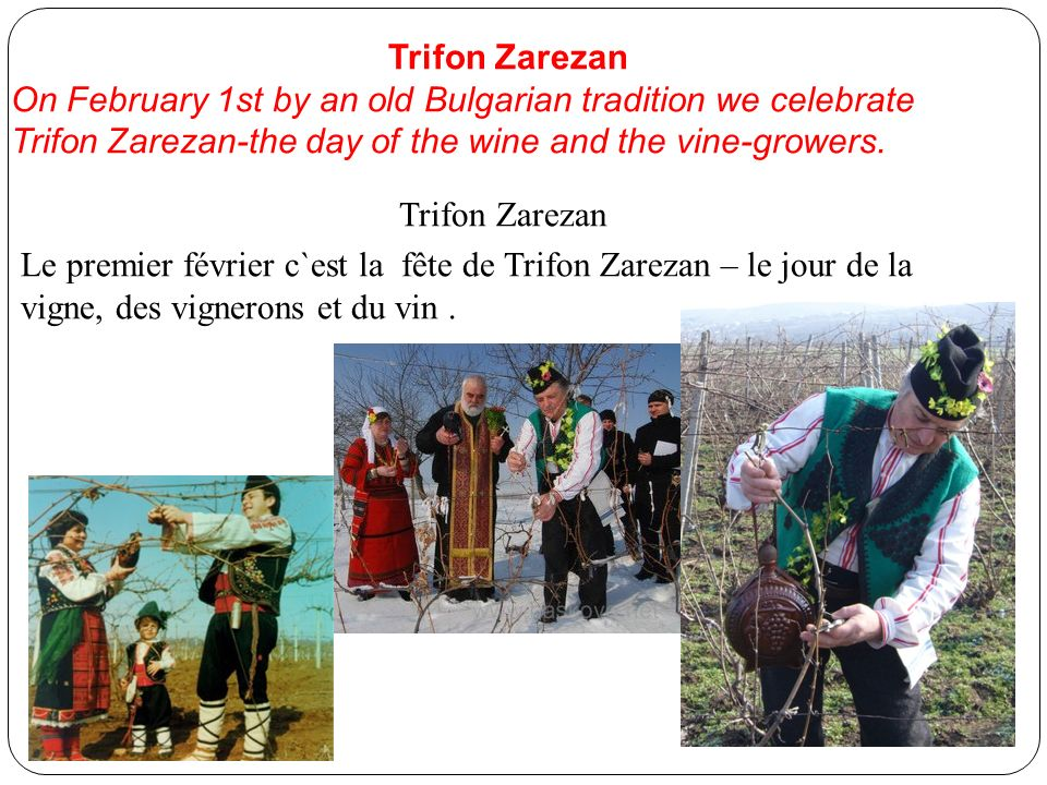 Trifon Zarezan On February 1st by an old Bulgarian tradition we celebrate Trifon Zarezan-the day of the wine and the vine-growers.