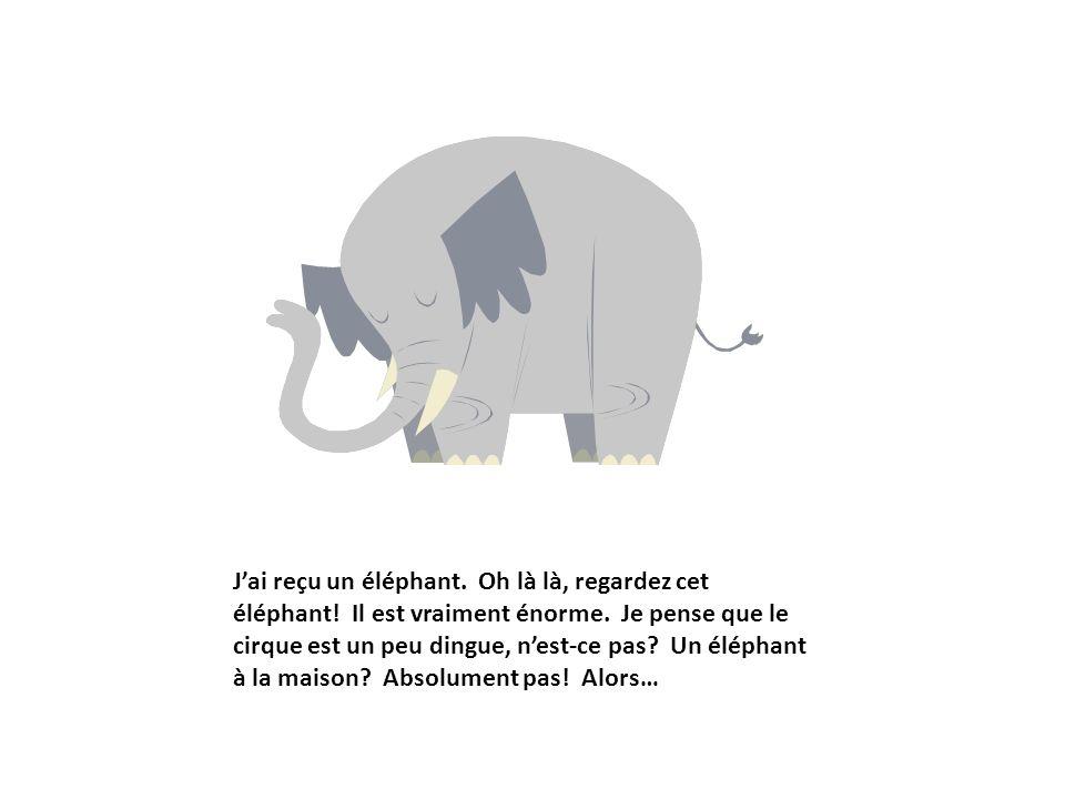J'ai reçu un éléphant. Oh là là, regardez cet éléphant
