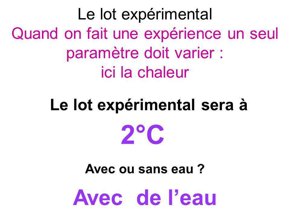 Le lot expérimental Quand on fait une expérience un seul paramètre doit varier : ici la chaleur
