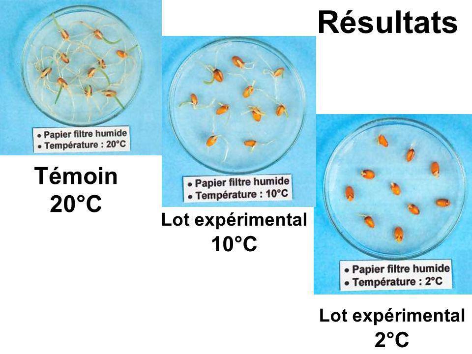 Résultats Témoin 20°C Lot expérimental 10°C Lot expérimental 2°C