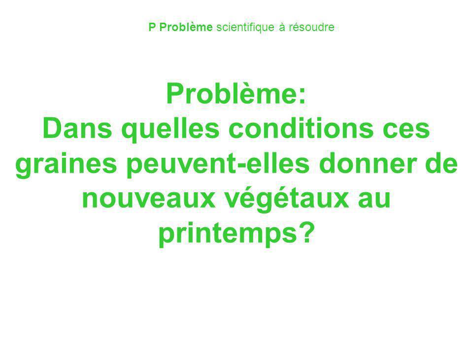 P Problème scientifique à résoudre