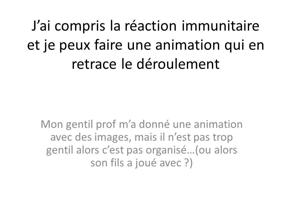 J'ai compris la réaction immunitaire et je peux faire une animation qui en retrace le déroulement
