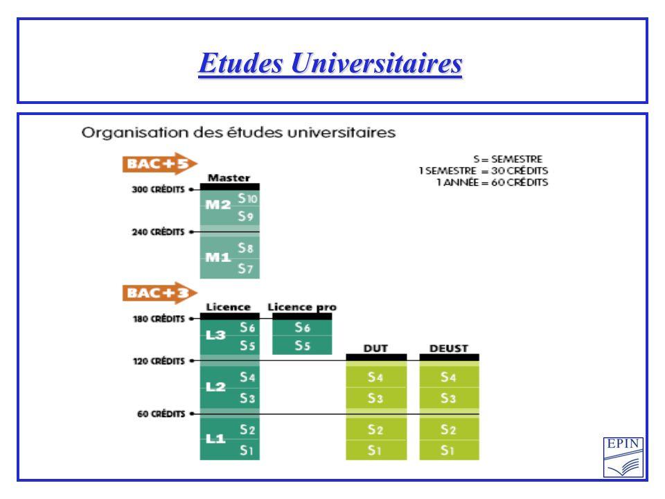 Etudes Universitaires
