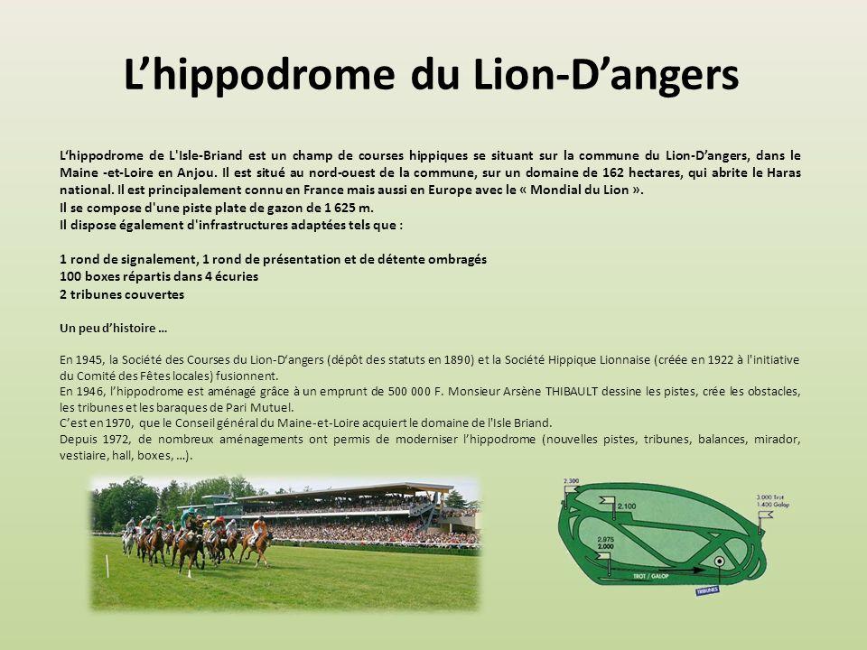 L'hippodrome du Lion-D'angers