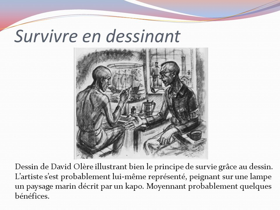 Survivre en dessinant