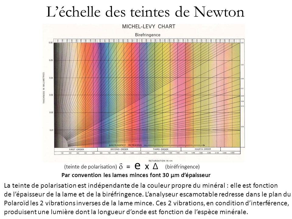 L'échelle des teintes de Newton
