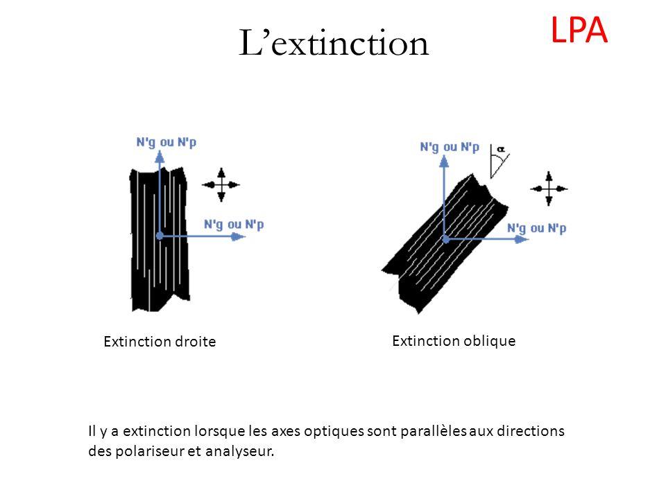 LPA L'extinction Extinction droite Extinction oblique