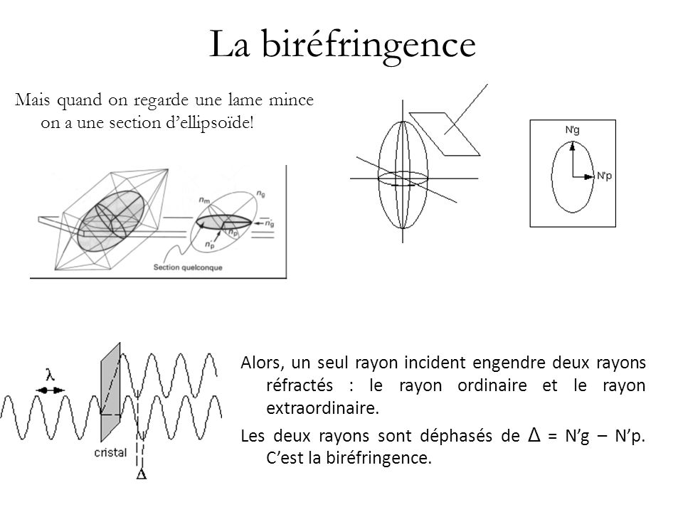 La biréfringence Mais quand on regarde une lame mince on a une section d'ellipsoïde!