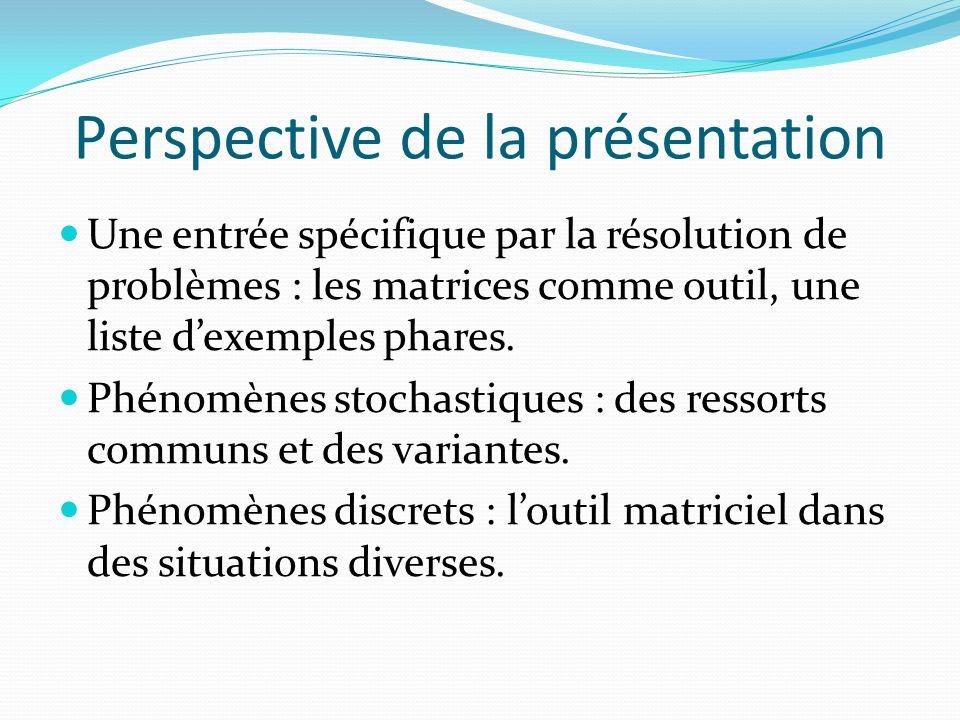 Perspective de la présentation