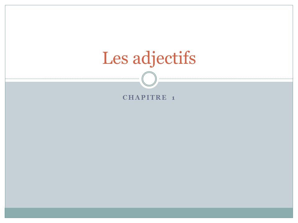 Les adjectifs Chapitre 1