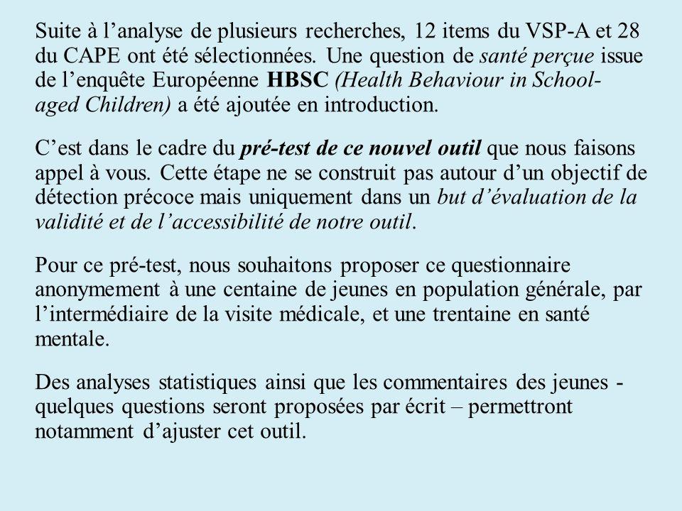 Suite à l'analyse de plusieurs recherches, 12 items du VSP-A et 28 du CAPE ont été sélectionnées.