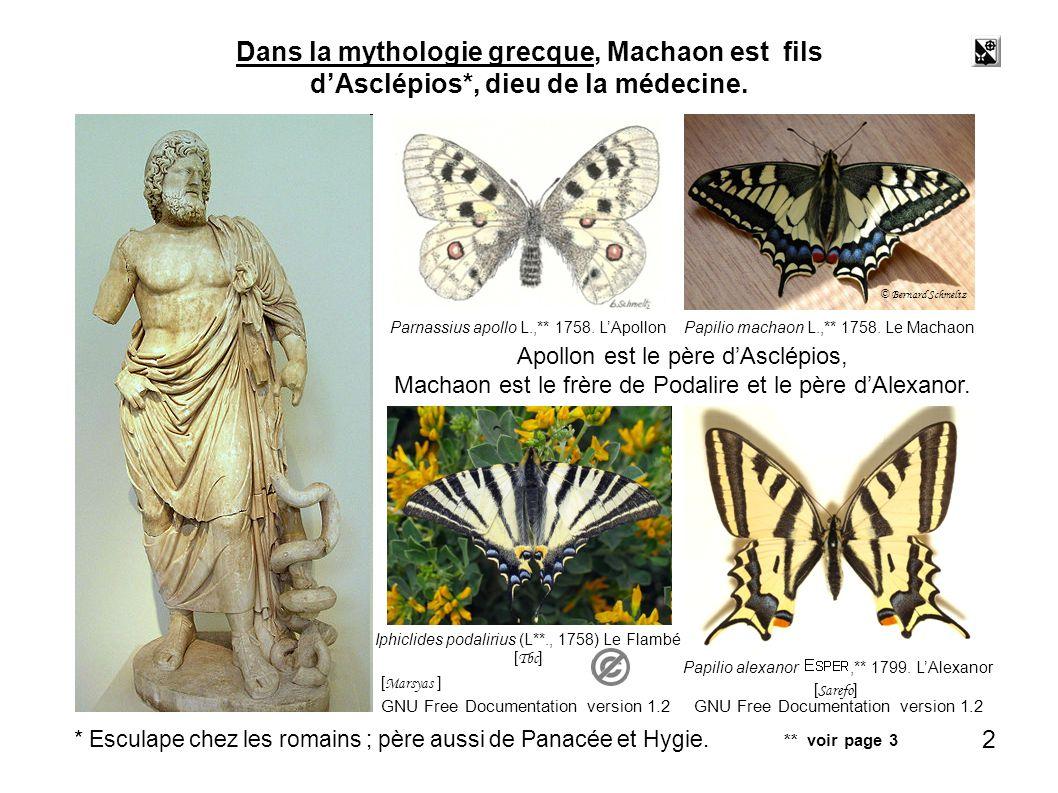 Dans la mythologie grecque, Machaon est fils