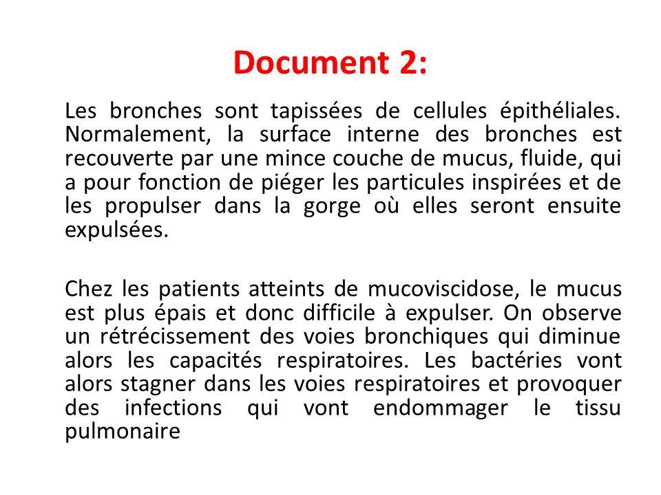 Document 2: