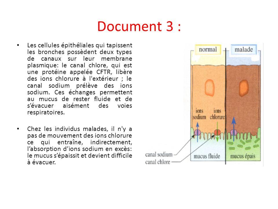 Document 3 :