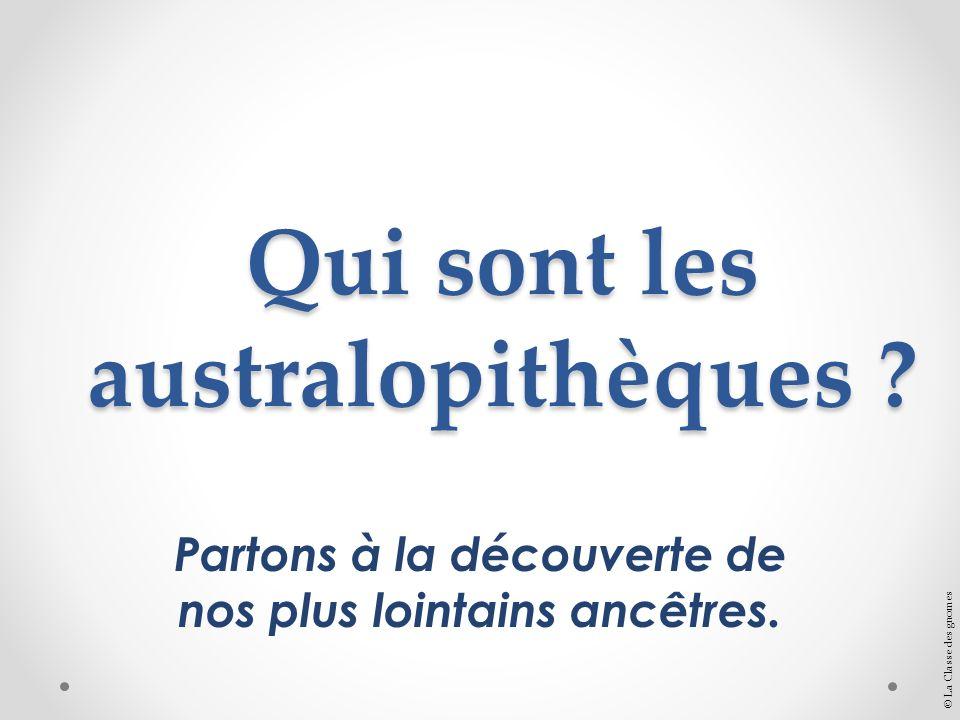 Qui sont les australopithèques