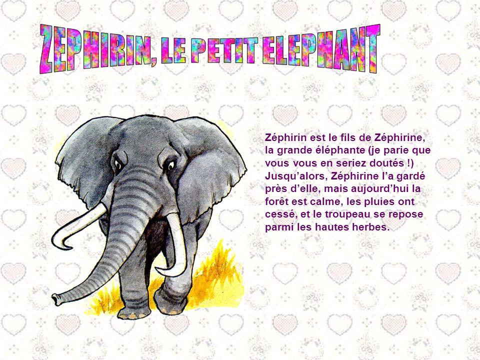 ZEPHIRIN, LE PETIT ELEPHANT