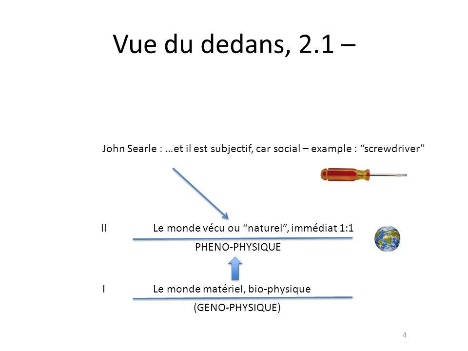 Vue du dedans, 2.1 – John Searle : …et il est subjectif, car social – example : screwdriver II. Le monde vécu ou naturel , immédiat 1:1.