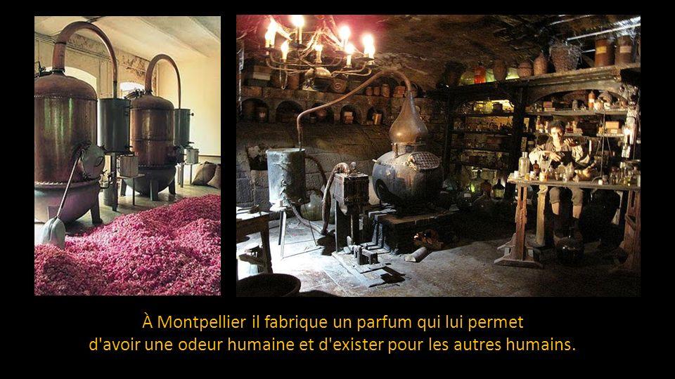 À Montpellier il fabrique un parfum qui lui permet d avoir une odeur humaine et d exister pour les autres humains.