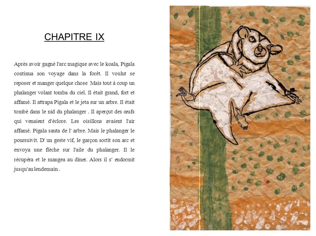 CHAPITRE IX