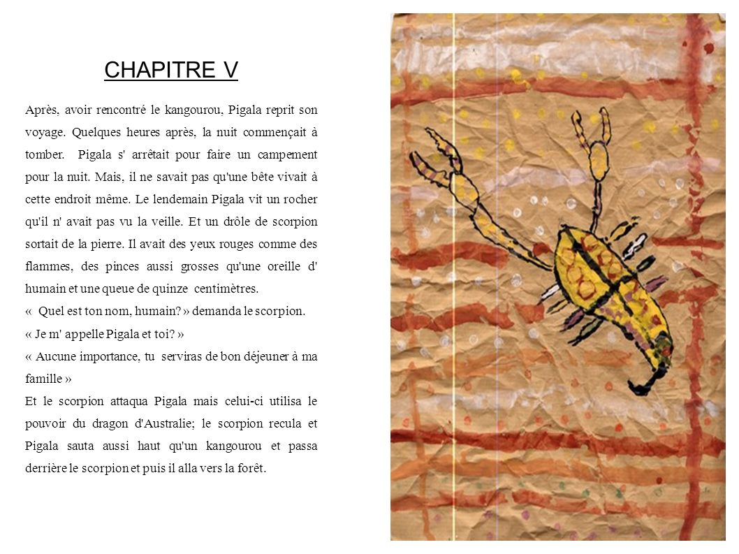CHAPITRE V