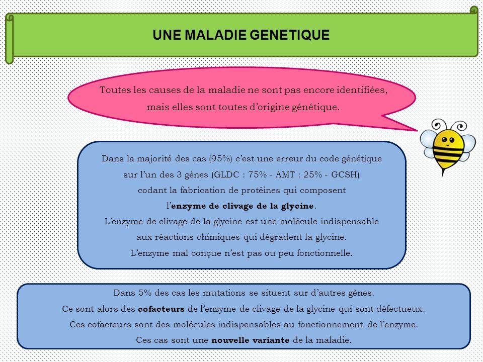 UNE MALADIE GENETIQUE Toutes les causes de la maladie ne sont pas encore identifiées, mais elles sont toutes d'origine génétique.