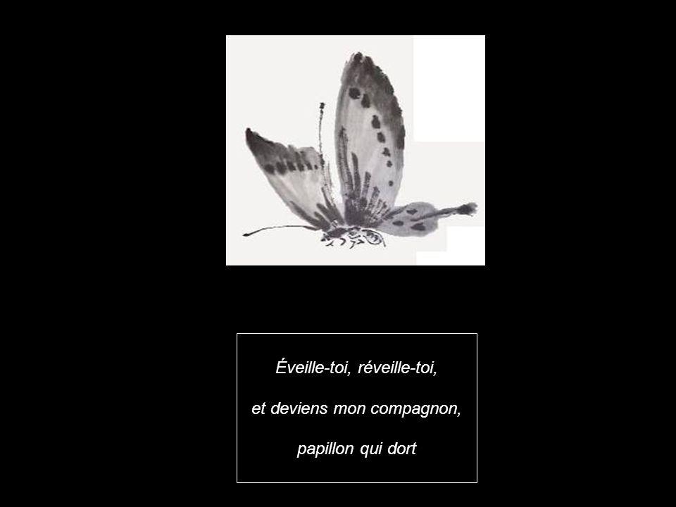Éveille-toi, réveille-toi, et deviens mon compagnon, papillon qui dort