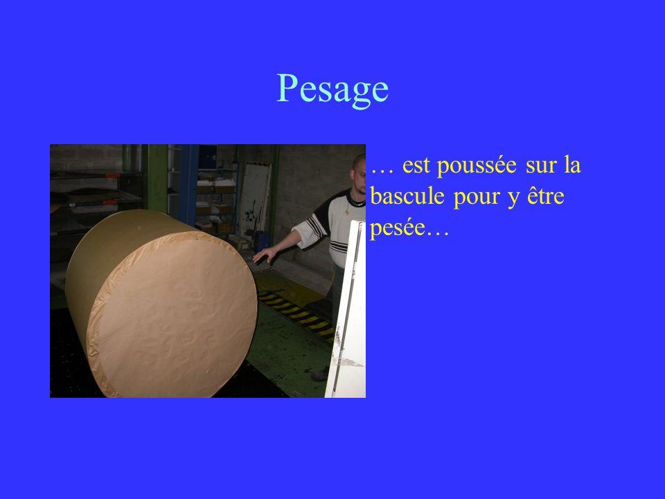 Pesage … est poussée sur la bascule pour y être pesée…