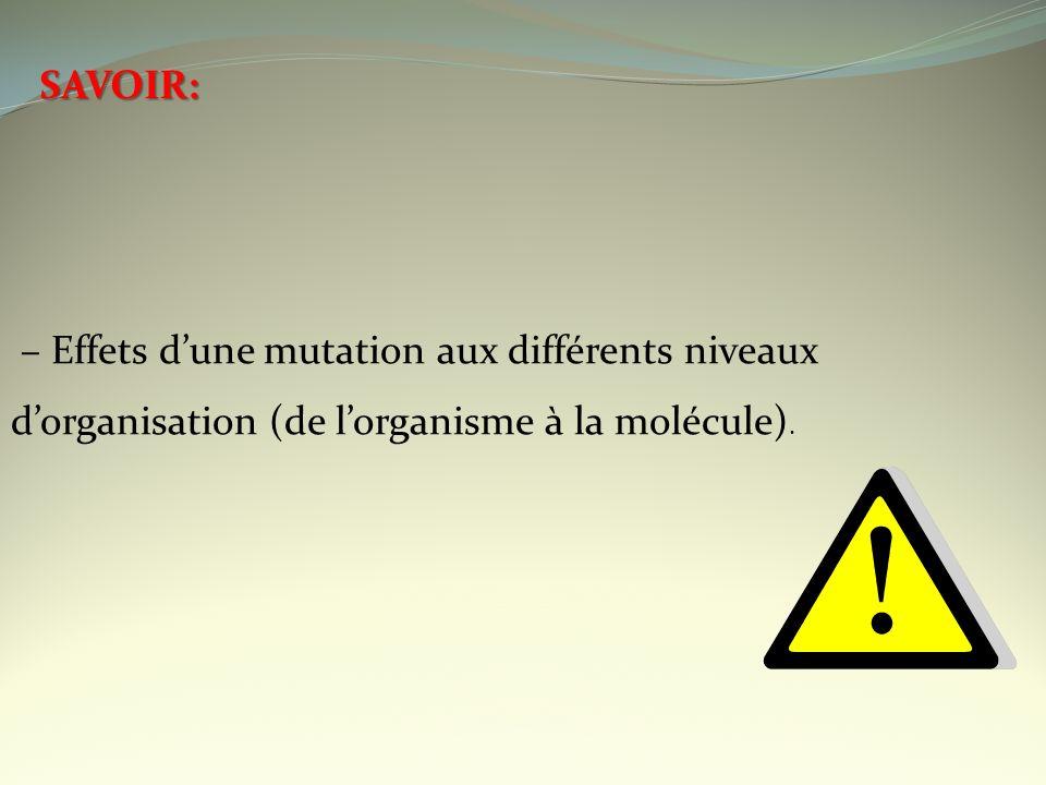 SAVOIR: – Effets d'une mutation aux différents niveaux d'organisation (de l'organisme à la molécule).