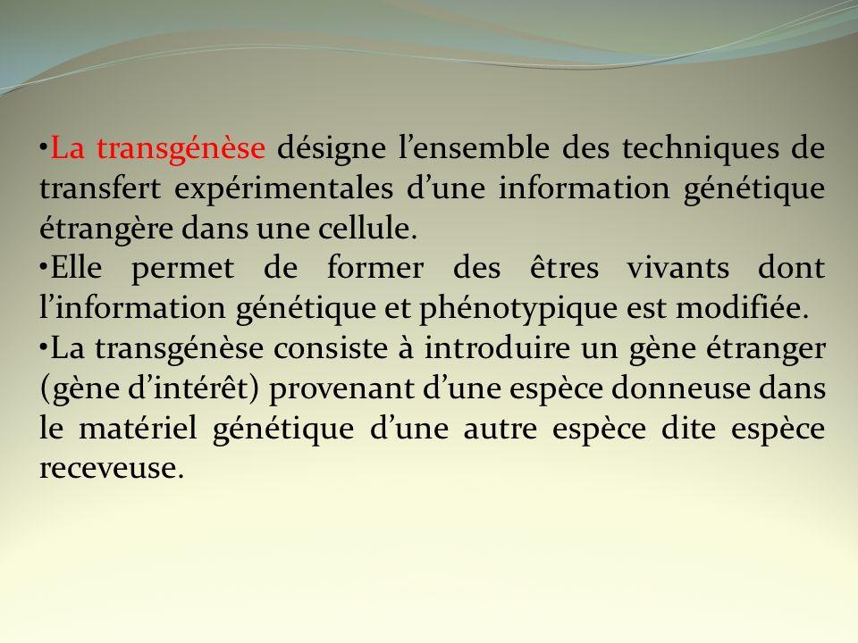 •La transgénèse désigne l'ensemble des techniques de transfert expérimentales d'une information génétique étrangère dans une cellule.