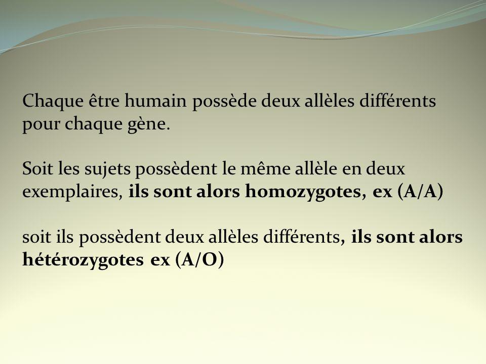 Chaque être humain possède deux allèles différents pour chaque gène.