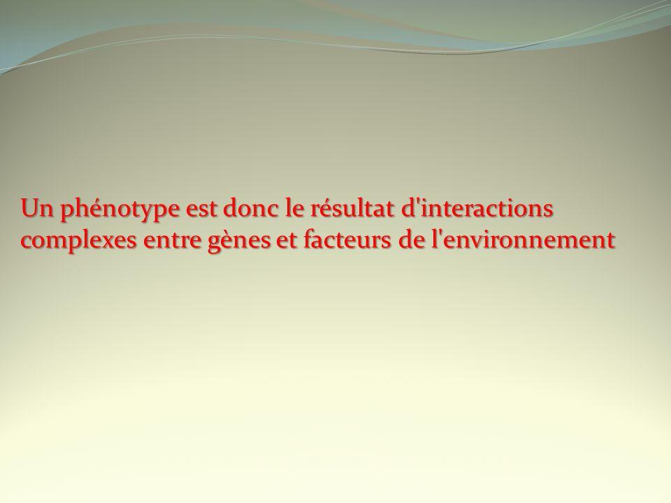 Un phénotype est donc le résultat d interactions complexes entre gènes et facteurs de l environnement
