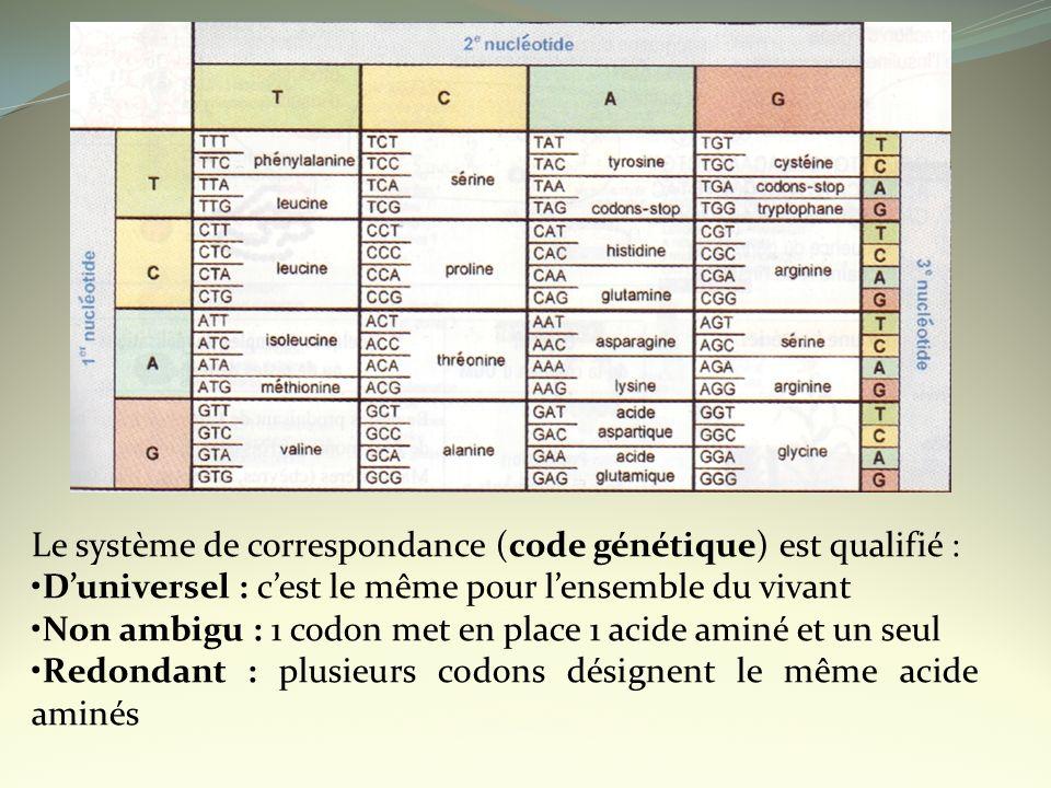 Le système de correspondance (code génétique) est qualifié :
