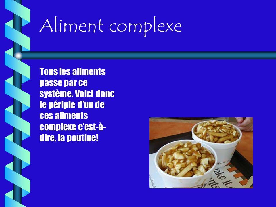 Aliment complexe Tous les aliments passe par ce système.