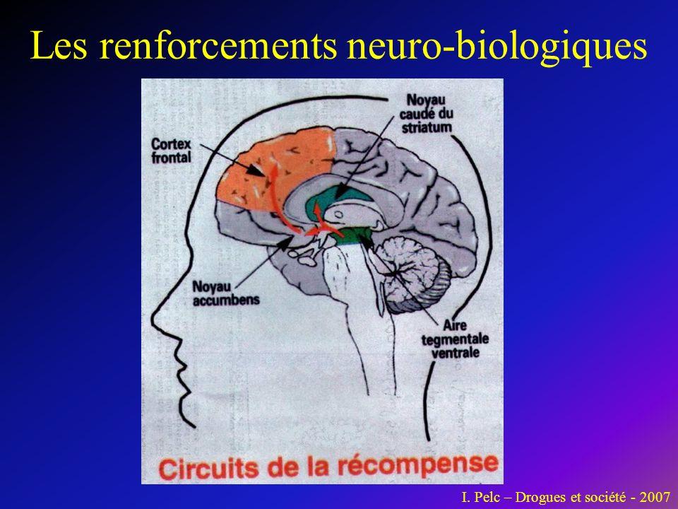 Les renforcements neuro-biologiques