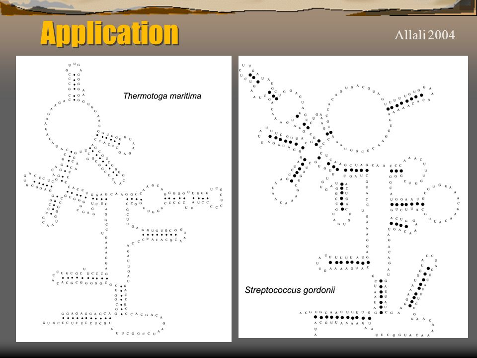 Allali 2004 Application