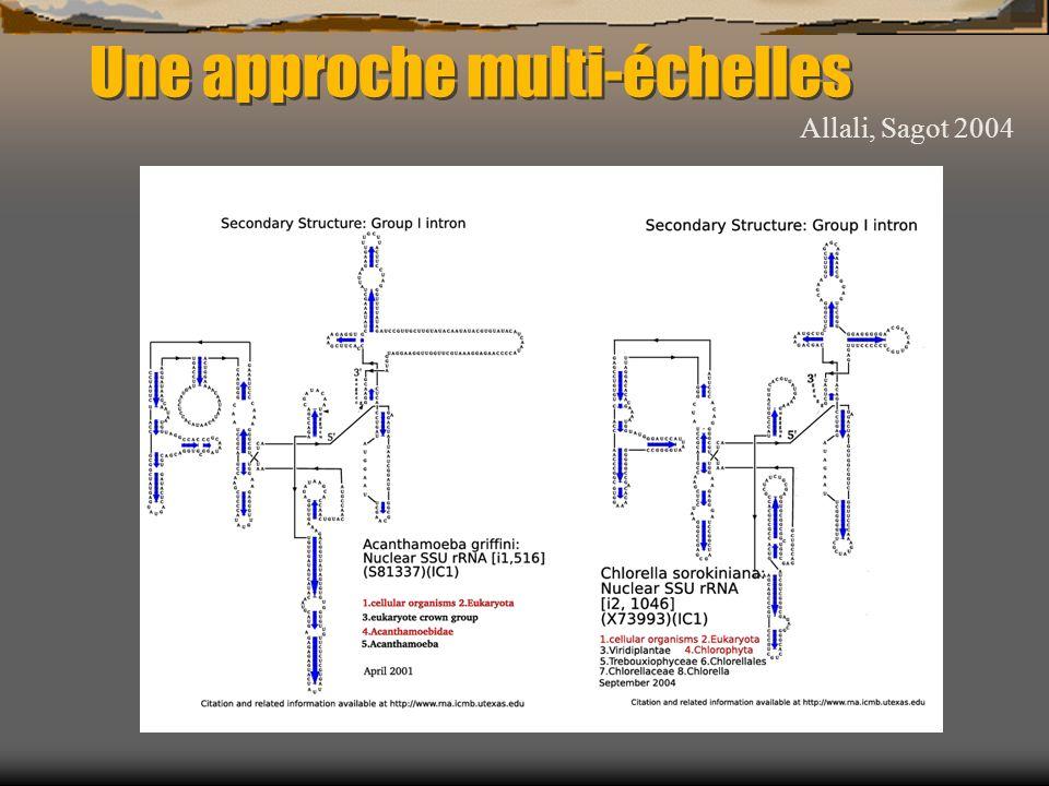 Une approche multi-échelles