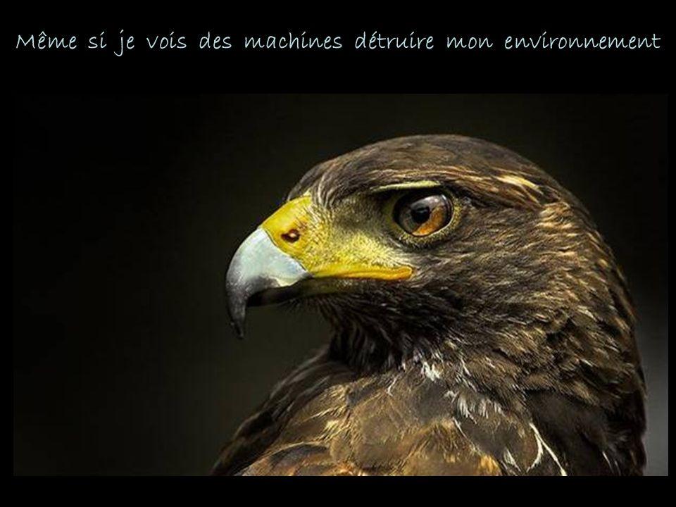 Même si je vois des machines détruire mon environnement