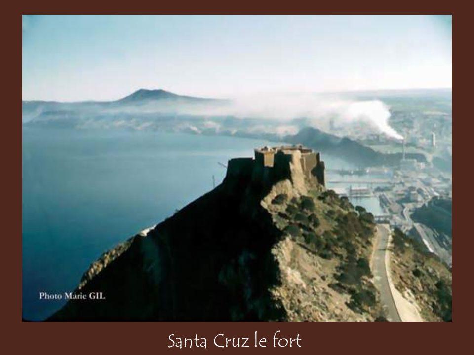 Santa Cruz le fort