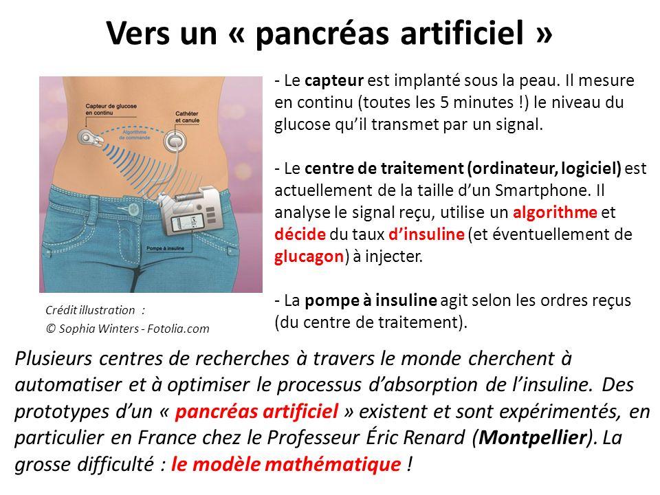 Vers un « pancréas artificiel »