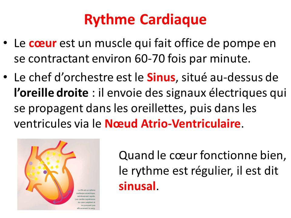 Rythme Cardiaque Le cœur est un muscle qui fait office de pompe en se contractant environ 60-70 fois par minute.